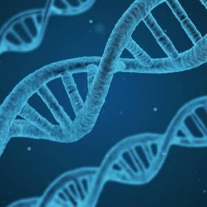 CellRelease